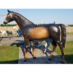 copy of chevaux